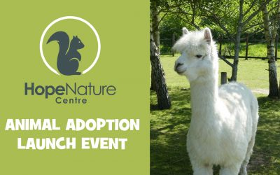 Animal Adoption Launch Event – 14th September 2019