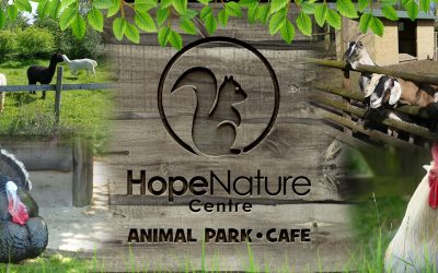 Hope Nature Centre Wins 2020 Tripadvisor Travelers' Choice Award