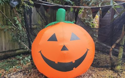 Visit Hope Nature Centre this Halloween season for our Trick or Treat Trail Event
